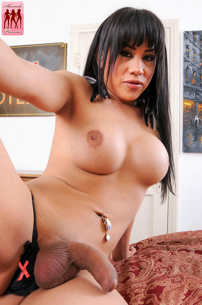 T-Girl Pornstar Alicia Del Rio