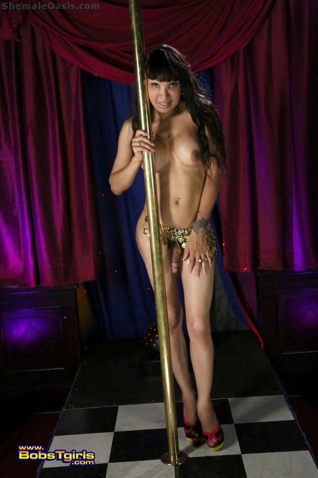T-Girl Vanilla - Vanilla Working The Pole