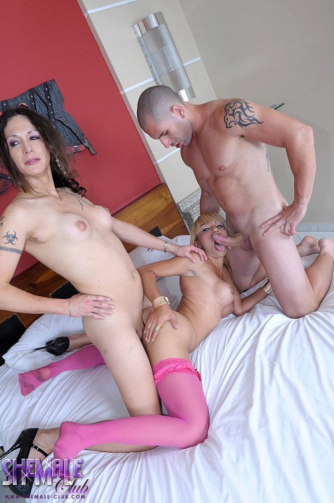 T-Girls 3some
