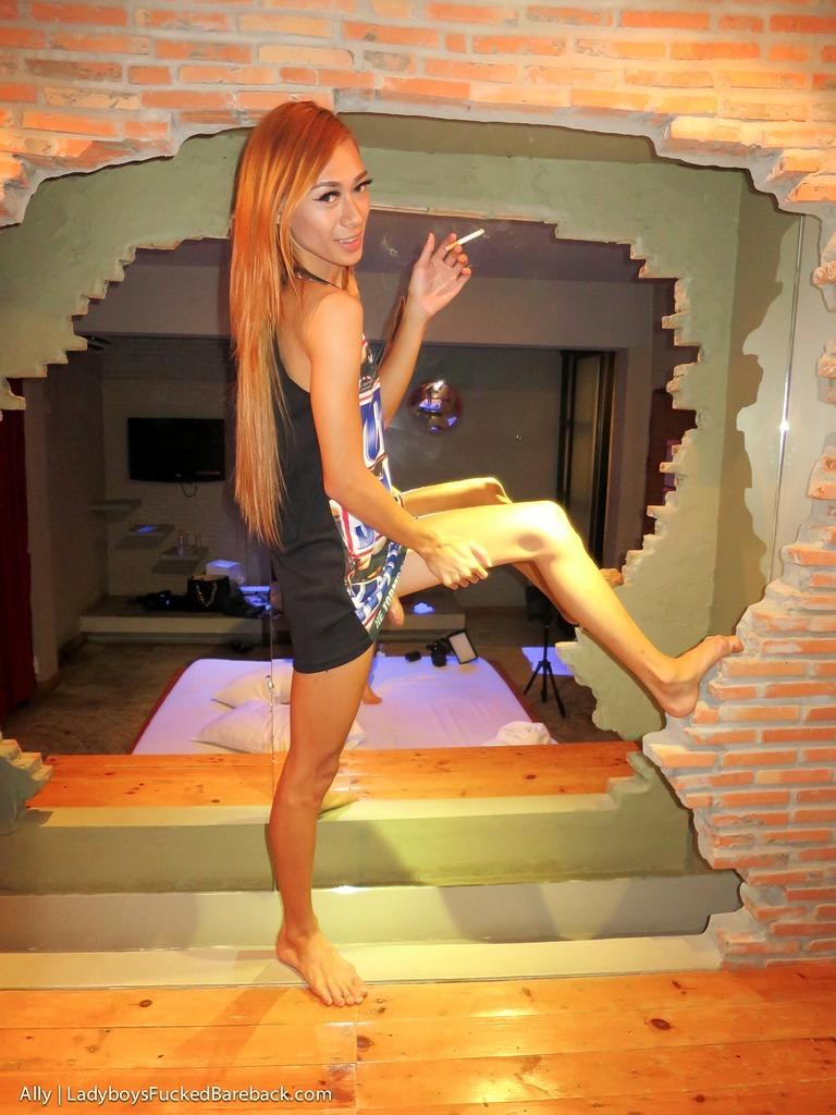 Tgirl Ally Barebacking
