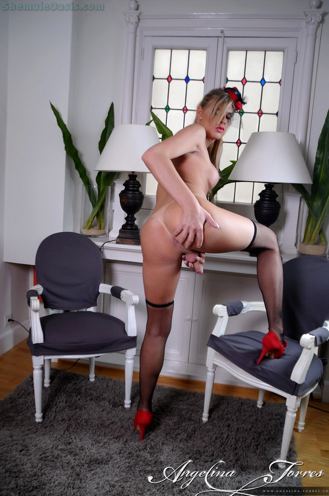 Tgirl Angelina Torres - Angelina Silk And Stockings
