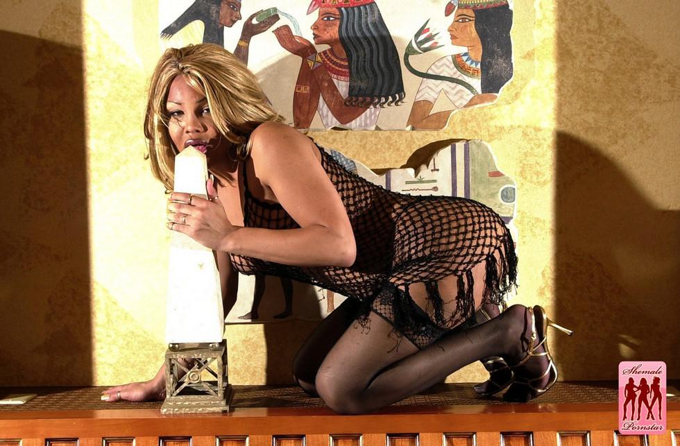 Tgirl Pornstar Angelina Gorgeous