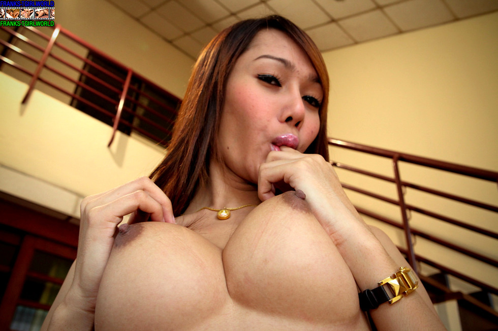 Thai T-Girl Lilly