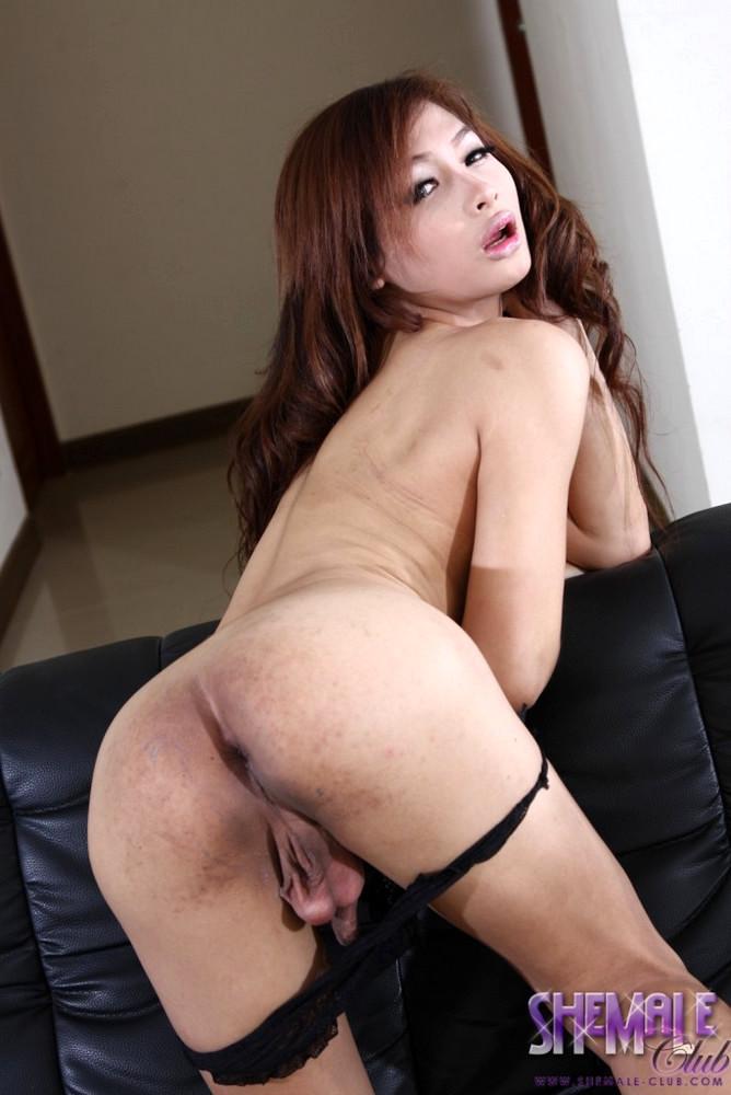 Thai T-Girl Mild
