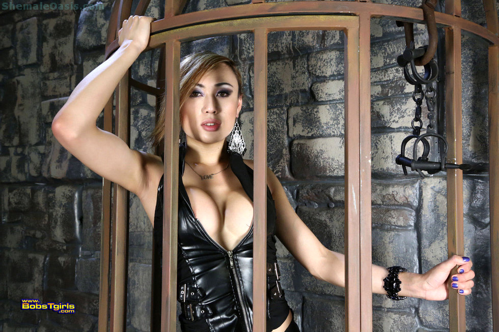 Thai T-Girl Venus Lux - Venus Lux Kissable In The Dungeon