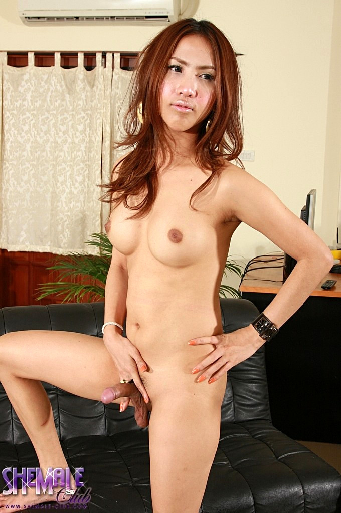 Thai Tgirl Pop