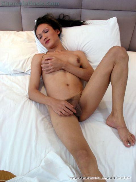 Thai Tgirl Wanks Oss!
