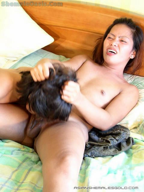 Thai Transexual Bangs A Girl!