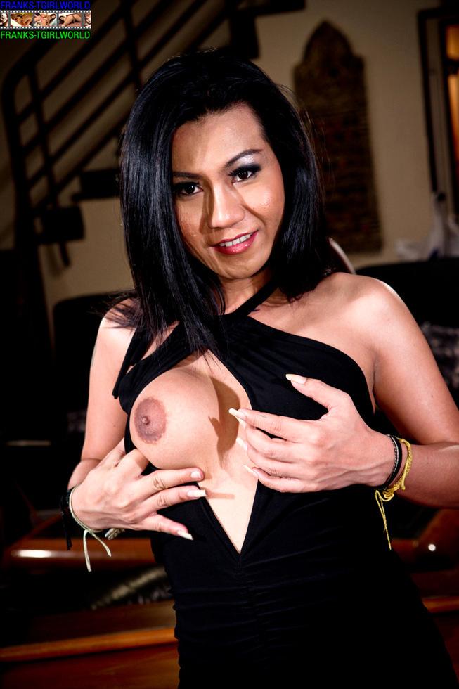Thai Transexual Koi
