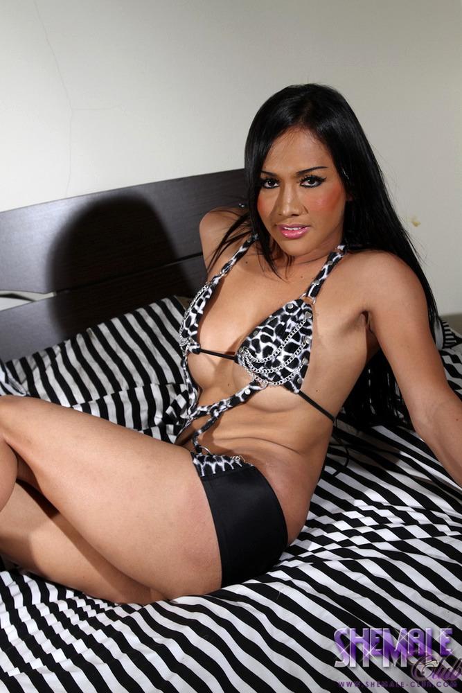 Thai Transexual Lucky - Lucky