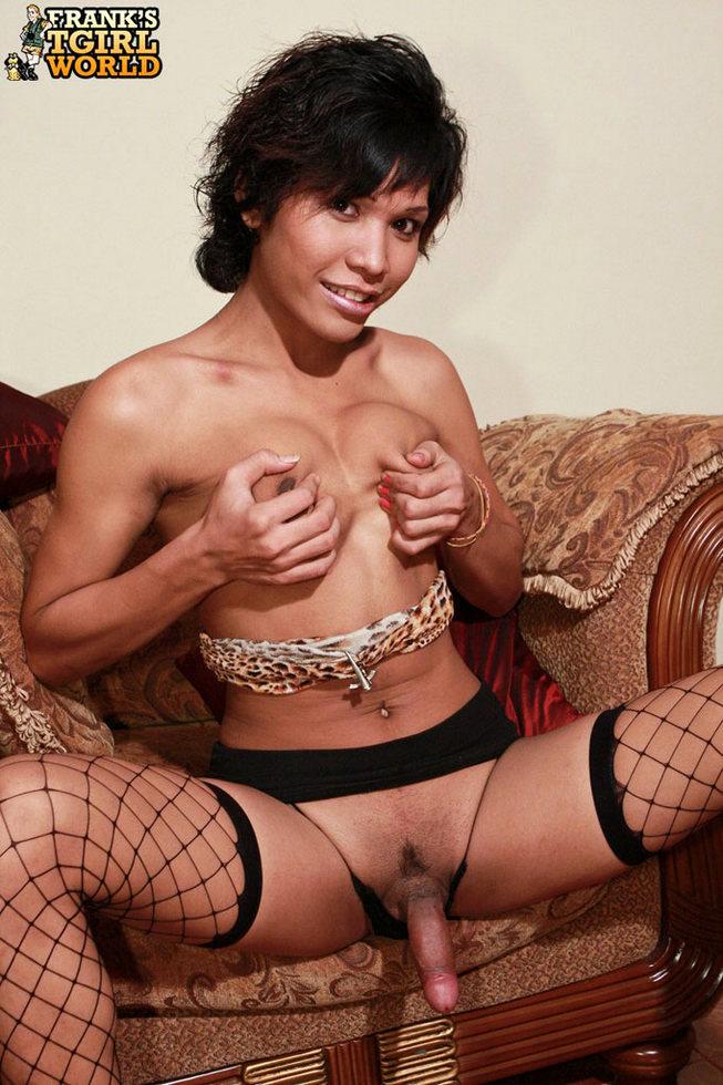 Thai Transexual Peair