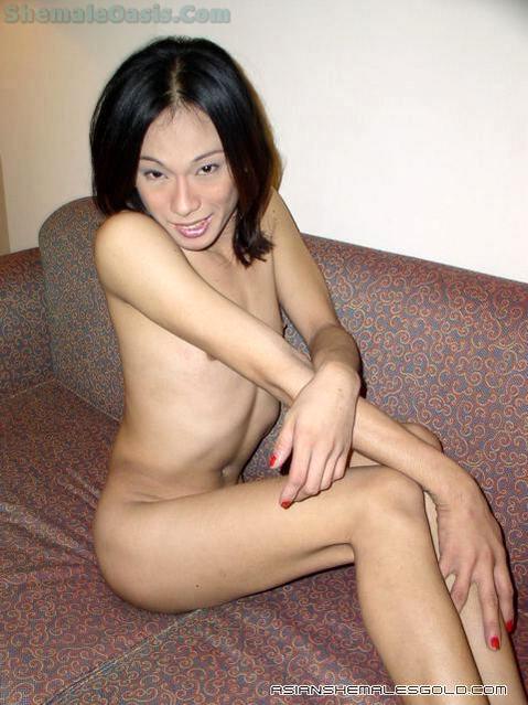 Thai Transexual Show!