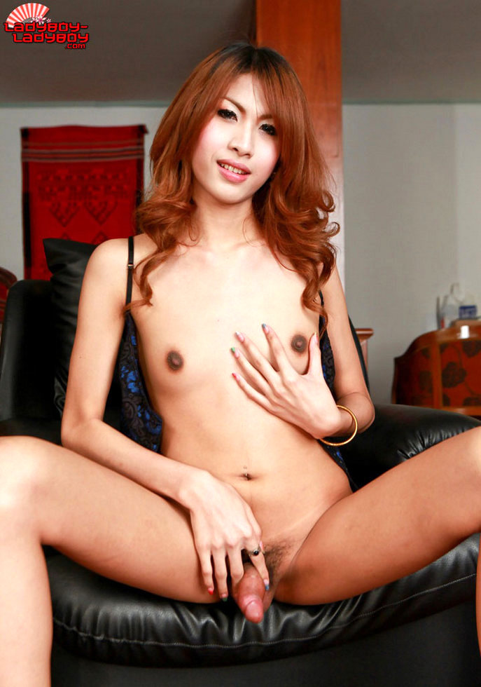 Tiny Titted T-Girl