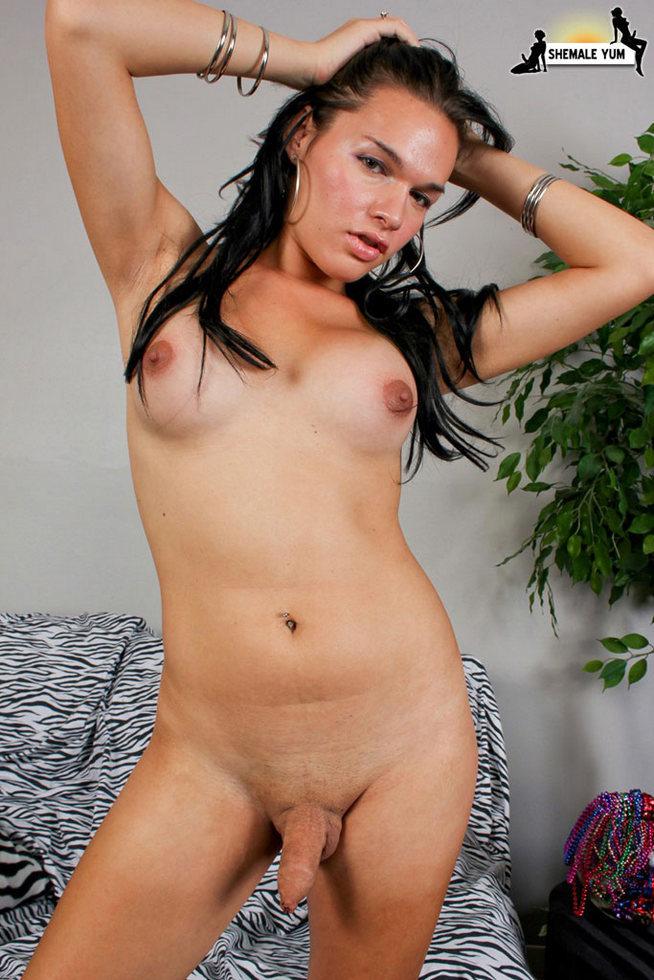 Transexual Ana Venus