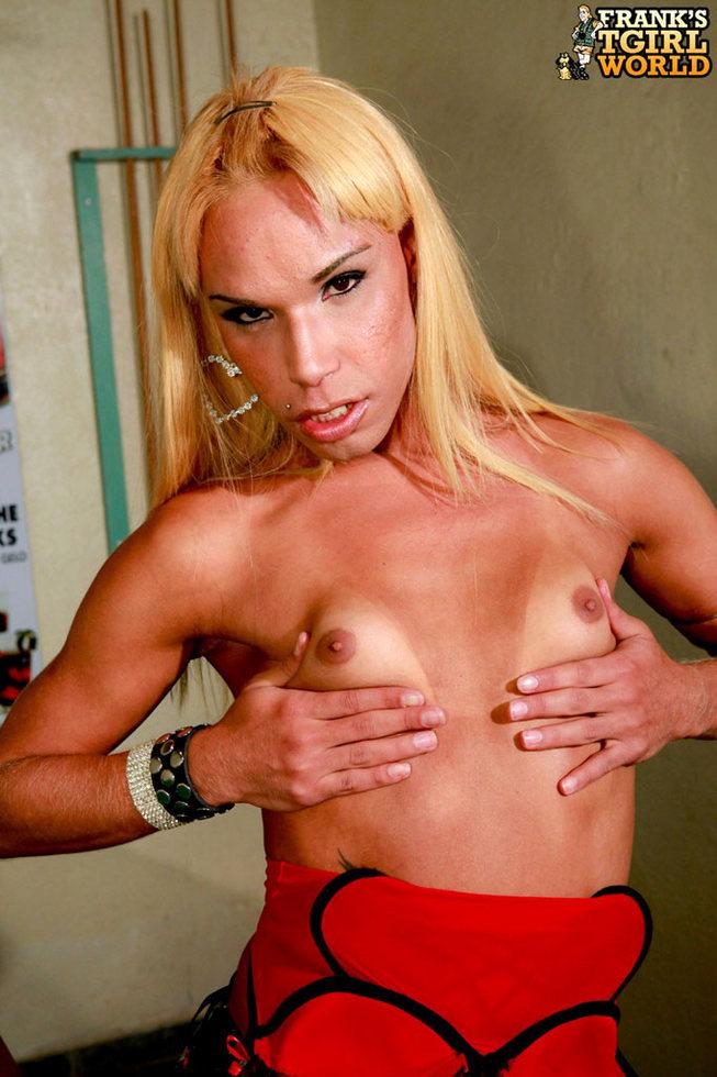 Transexual Danielly Bionda