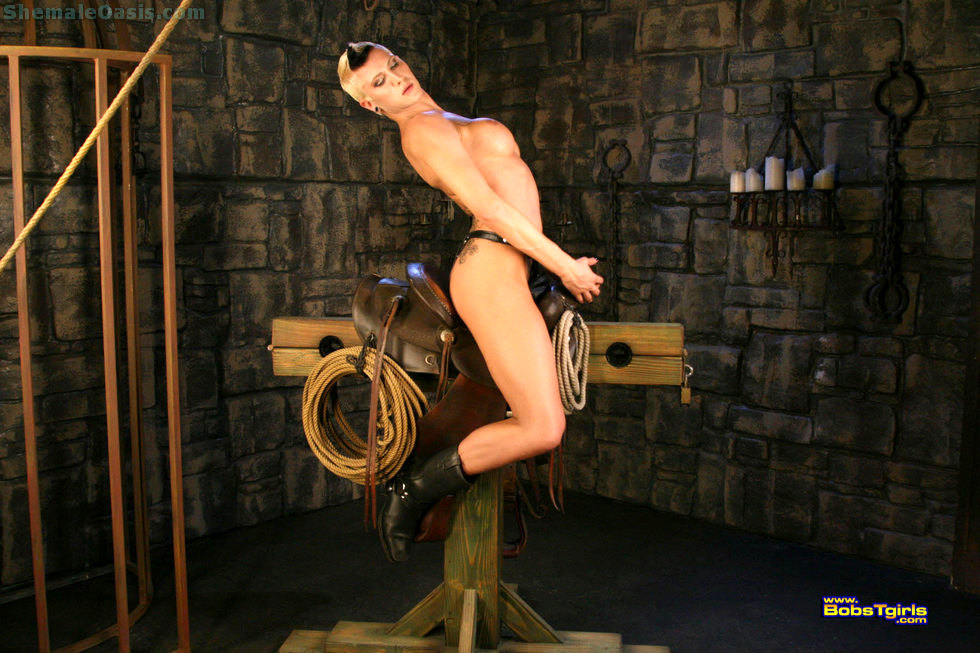 Transexual Danni Daniels - Danni Daniels Back In The Saddle