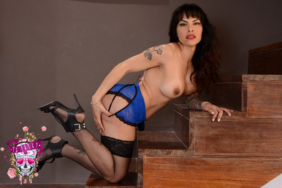 Transexual Foxxy - Blue Lace