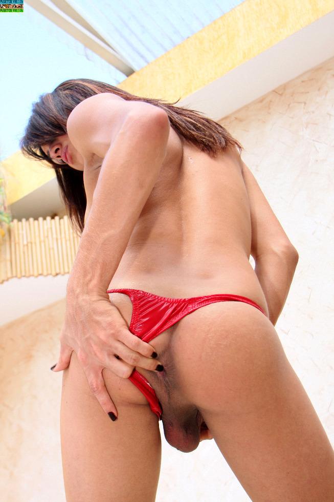 Transexual Luanna Varela