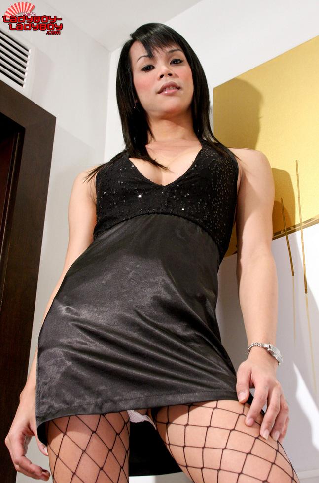 Transexual Natty