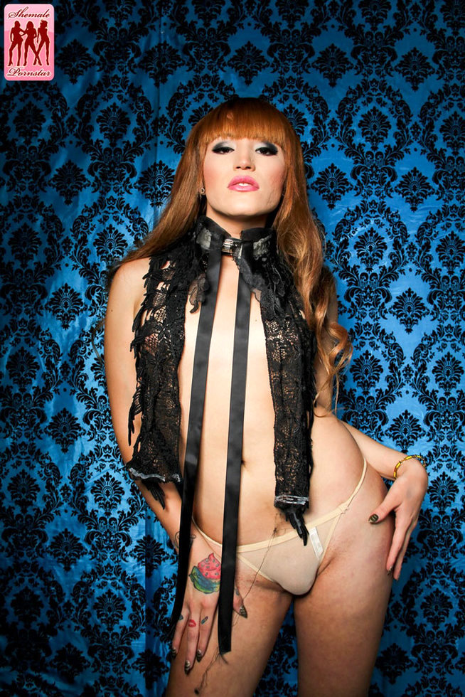 Transexual Pornstar Sofia Ferreira